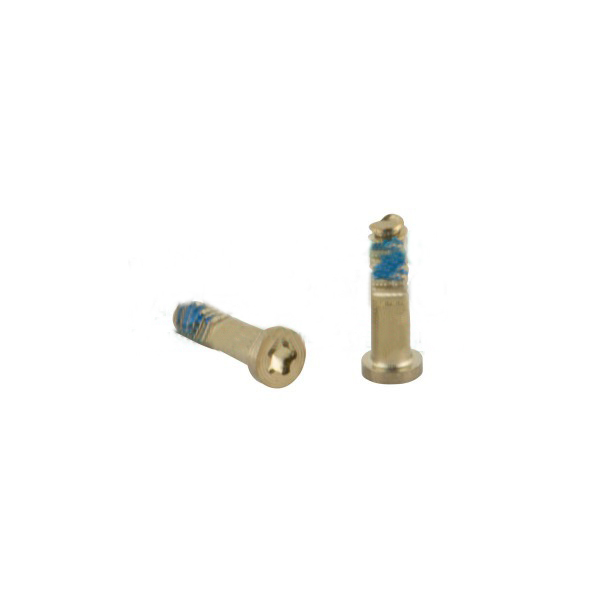 Нижний винт для iPhone 5/ 5S/ SE (2 шт.) золотистый